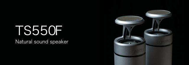 TS550 / TS500