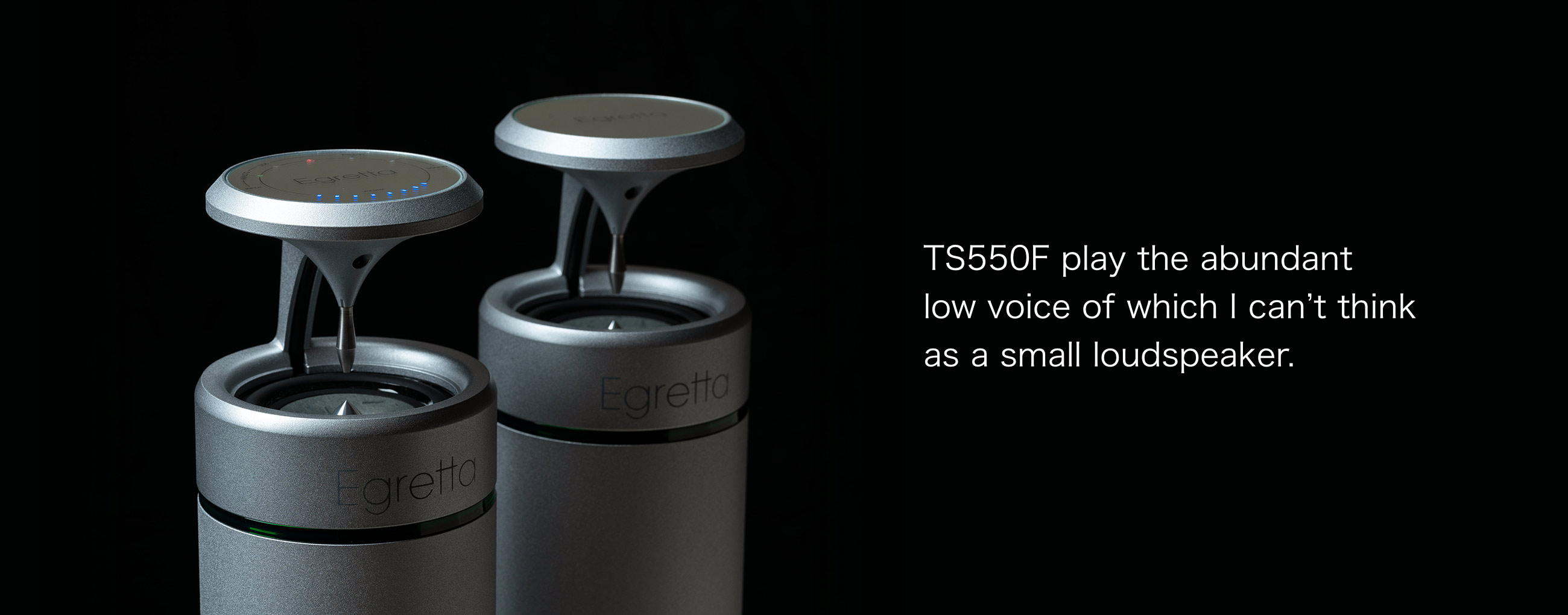 Natural sound speaker TS550 / TS500