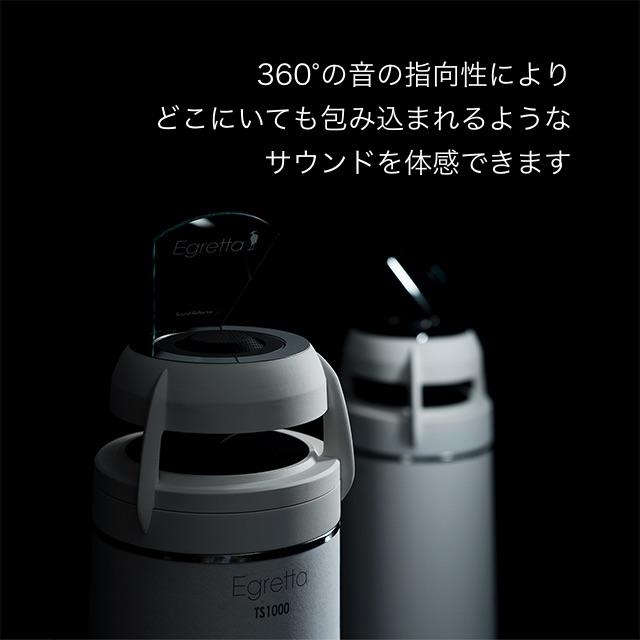 指向性バスレフス・タワー型スピーカー TS1000